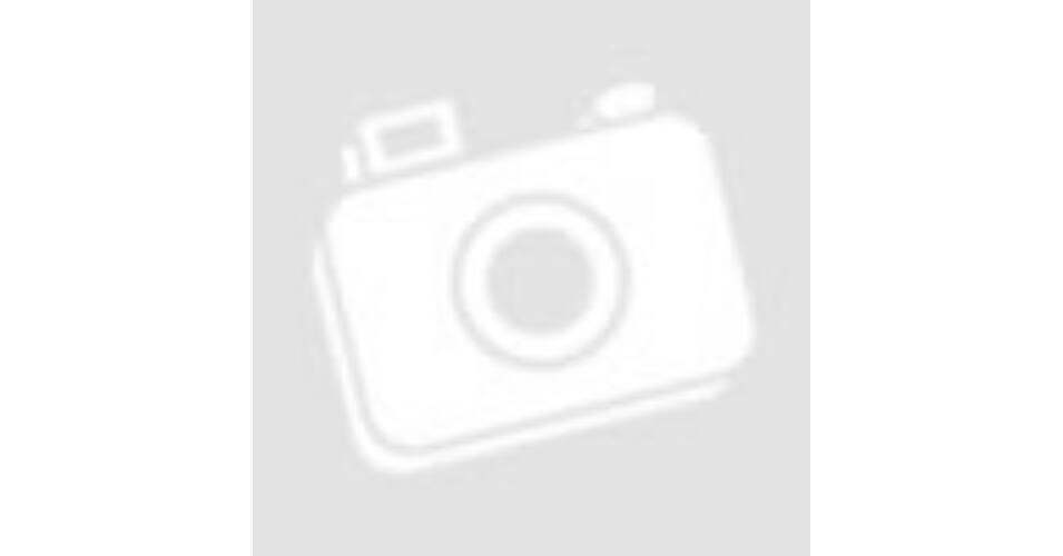 Bélméregtelenítő dr schulze s, dr. Schulze béltisztító 2. formula - g - VitaminNagyker webáruház